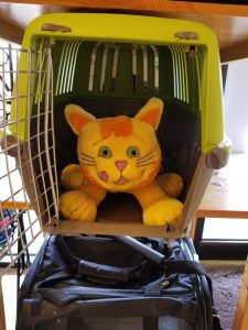 Cat carrier, cat crate | Goodness for Pets