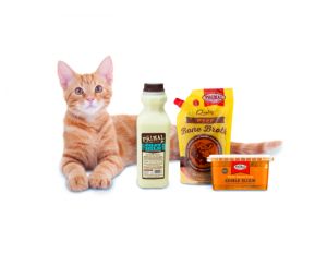 cat water, pet store, pet shop | Goodness for Pets