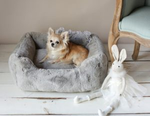 New Puppy Checklist, Dog Bed, Prepare For Puppy, Pet Store| Goodness For Pets