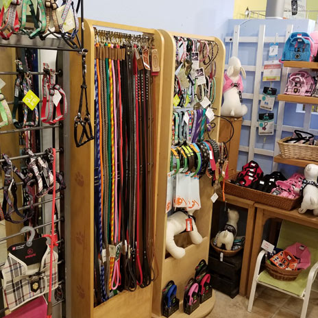 Goodness for Pets Pet Gear | Natural Pet Supply Store Naples, Florida