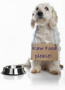 Raw Food Diet, Dog Food, Pet Food, Pet Store | Goodness For Pets